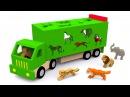 Мультики про машинки. Учим диких животных. Развивающий мультфильм для детей от 12...