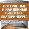 Потерянные и найденные животные Екатеринбурга
