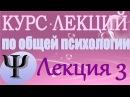 Общая психология Курс лекций В В Петухова Лекция 3