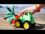 Развивающее видео про машинки.Учим цвета. Хрюшка из Angry Birds и машинки на пляже.