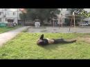 Video Shok №228 :: Это паркур, детка