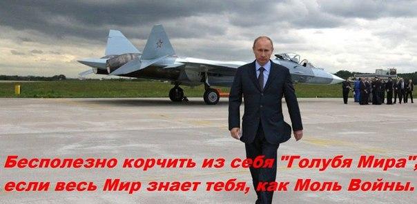 В Госдепе США считают нецелесообразным предложение Путина о создании единого антитеррористического фронта - Цензор.НЕТ 1986