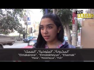 Easy arabic - egyptian food