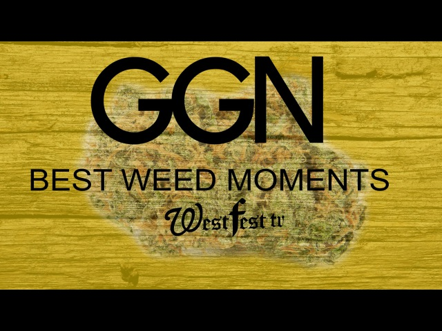 GGN WEED MOMENTS
