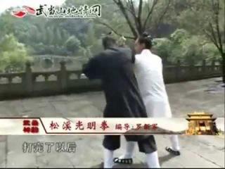 Блестящий кулак Гуан Мин ( Удан Сунси пай 武当松溪派 )