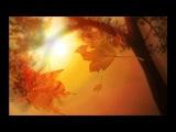 Paula Cole - Autumn Leaves (lyrics)