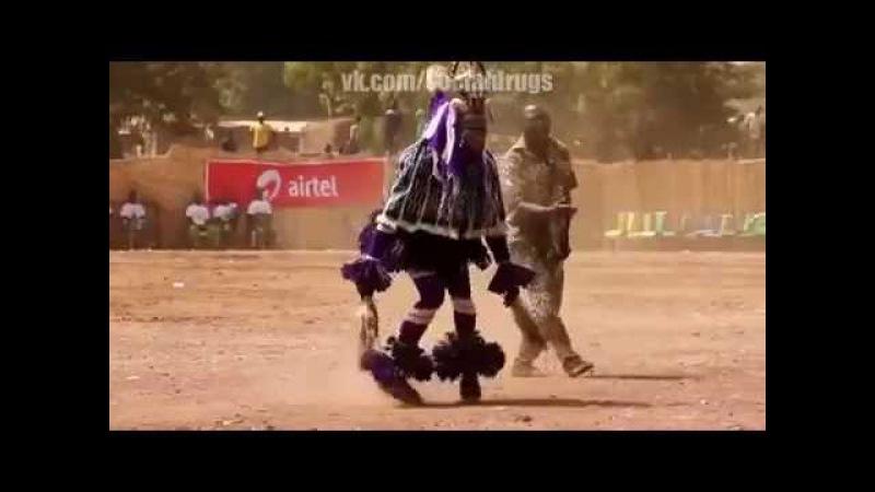 ШОК Африканцы тоже танцует лезгинку Прикол