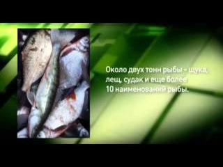 Заповедная Россия. Заповедник Белогорье 2011