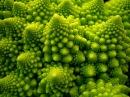 Фракталы Чудеса природы Поиски новых размерностей