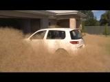 Жители востока Австралии пострадали от большого количества перекати-поле (местные жители называют