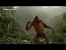 Маймун