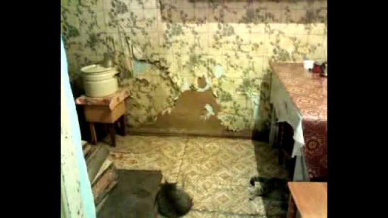 Бедность и нищета в РФ