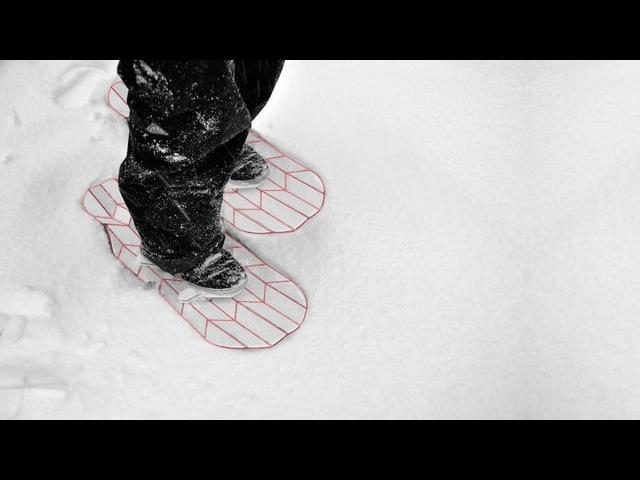 Flux Snowshoe