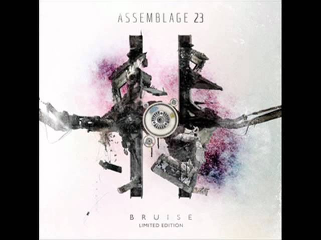 Assemblage 23 - The Noise Inside My Head.mp4