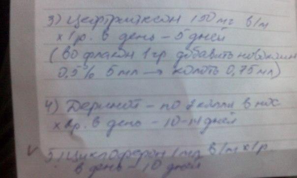 https://pp.vk.me/c628325/v628325607/19851/OCAkk_MC9r8.jpg