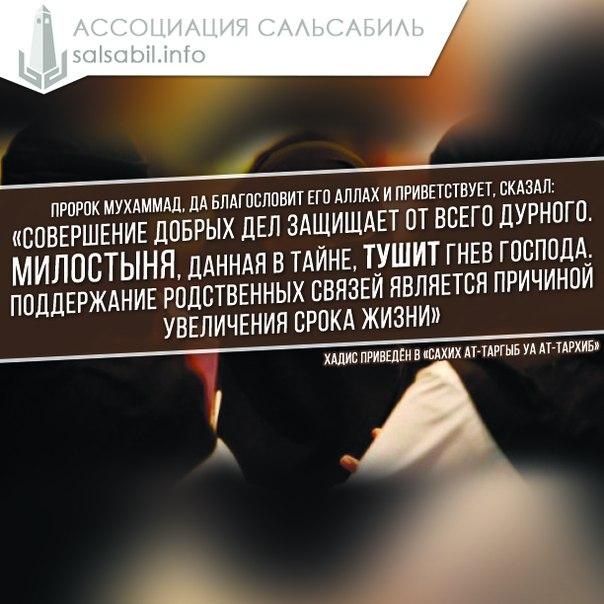 Амин Шангареев