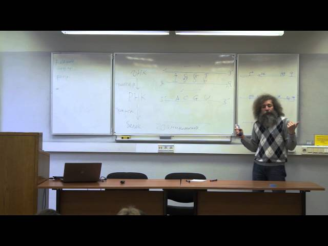 [Коллоквиум]: Все, что вы хотели знать про молекулярную биологию, но не удосужили ...