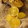 Металлоискатели и монеты Старый Оскол