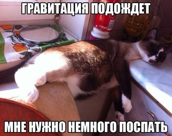 Всяко - разно 162 )))
