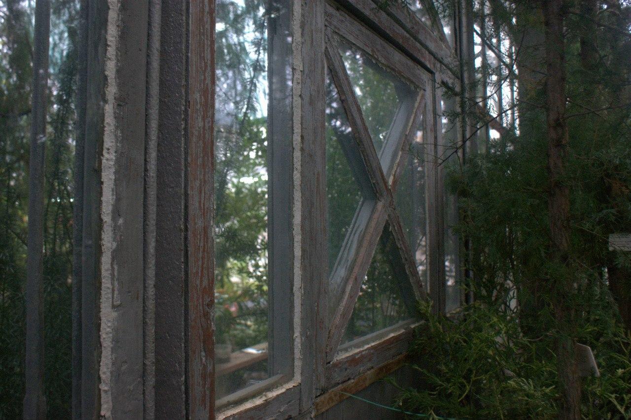 Узенькая тропинка по которой савушкин 5 фотография