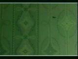 леонид агранович-дай денг