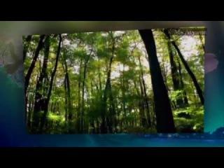 Ретро 80 е -Франк Дюваль- Touch My Soul (клип)