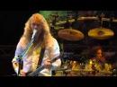 Megadeth - Symphony Of Destruction (Reggae Version)