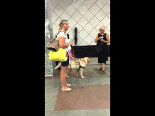 Видео, снятое на телефон Виктории Павленко 29.07.2015 на станции метро Профсоюзная
