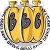 BREVIS BRASS BAND - самая веселая кавер-команда!