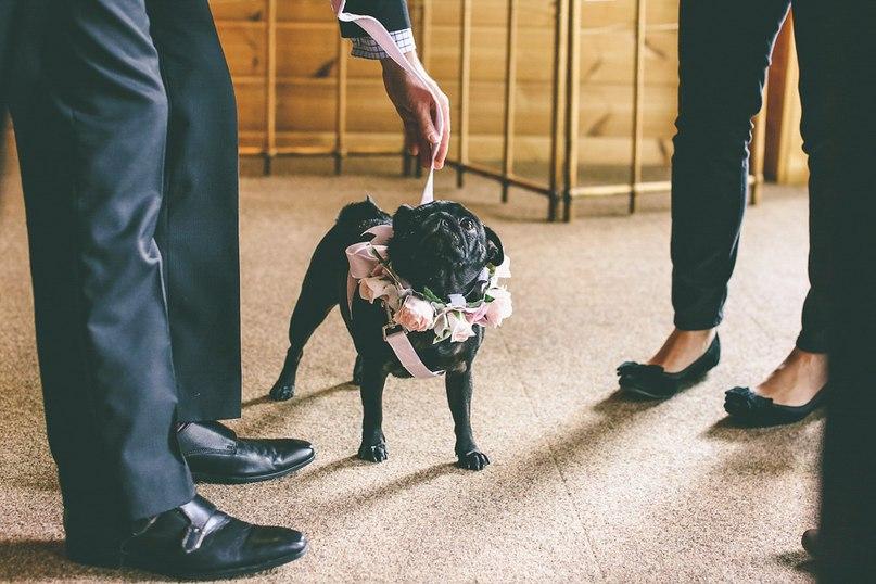8RuzoEws7RY - Английская свадьба в стиле VINTAGE INSPIRED
