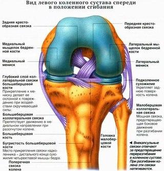 Боль в области спины под лопаткой слева