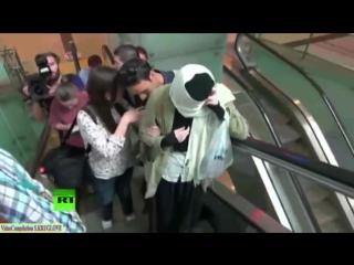 Варвара Караулова созналась в попытке примкнуть к ИГил