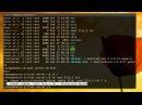 Научись Linux: пользователи и права доступа (эпизод 6)