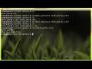 Научись Linux: команды для работы с файлами (эпизод 4)