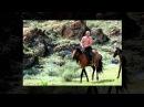Путин и лошади . Фотоальбом