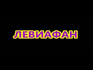2014  (Левиафан)