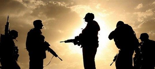 Россия отреагировала на ввод польских наемников в Донбасс