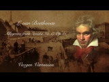 L. van Beethoven. Allegretto from Sonata No.17. Vazgen Vartanian