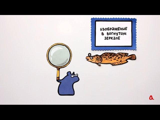 Изображение в вогнутом зеркале - Физика в опытах и экспериментах