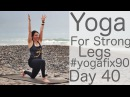 Yoga for Strong Legs Day 40 Yoga Fix 90 with Lesley Fightmaster
