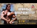 Арнольд Шварценеггер Мотивация (Arnold Schwarzenegger Motivation) | Канал GymFit INFO
