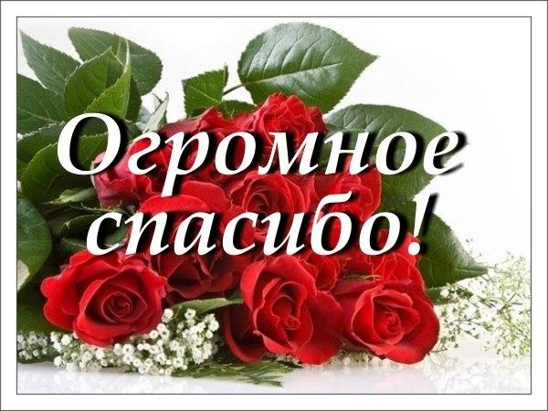 https://pp.vk.me/c628329/v628329238/2935d/IfkDFZzlB_8.jpg