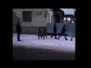 Чинадіївський депутат розчищає тротуар від посторонніх предметів.