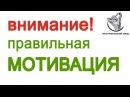 Правильная мотивация - Фитнес для начинающих - Выпуск 10