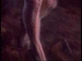 Helloween - Halloween (1987)
