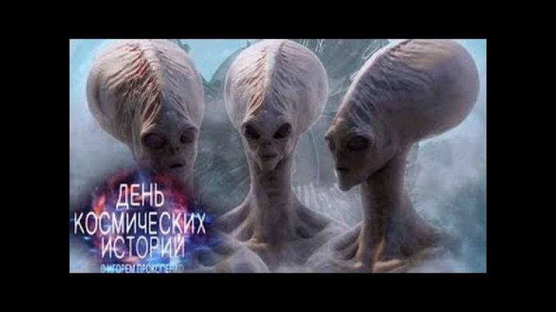 День космических историй. Кто же мама? (22.02.2016) HD