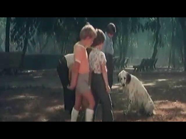 Ласковый май - Бездомный пёс