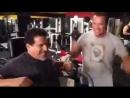 Arnold SHvarcenegger i Lui Ferrino treniruyut drug druga.480