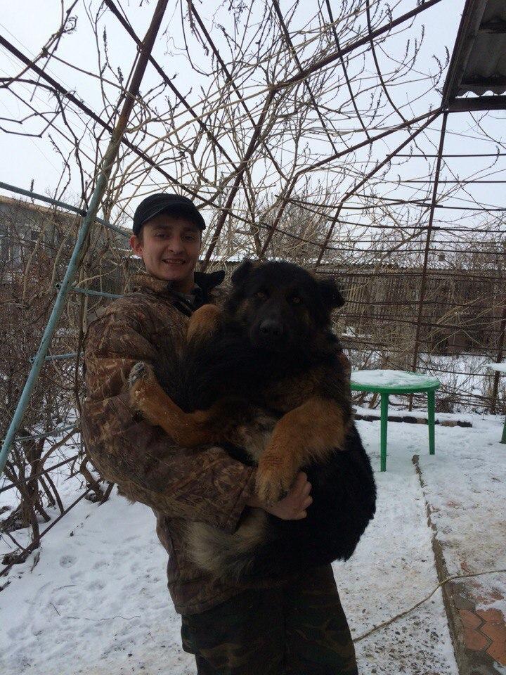 Алексей Глоба, Береславка - фото №6