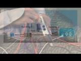 MACsec на коммутационных платформах катализатора Cisco